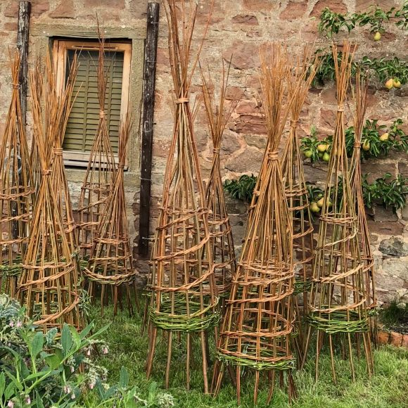 Making Willow Plant Supports | 18 May 2019 | SOLD OUT