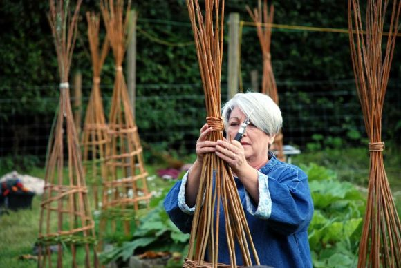 Making Willow Plant Supports | 30 May 2020 | Bookings Open