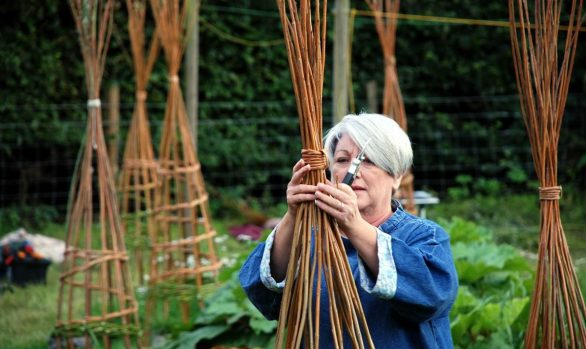 Making Willow Plant Supports | 30 May 2020 | Postponed to 23 May 2021