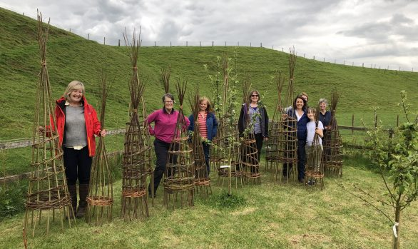 Making Willow Plant Supports | 31 May 2020 | Postponed to 22 May 2021