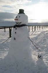 Snowman and Snowcat
