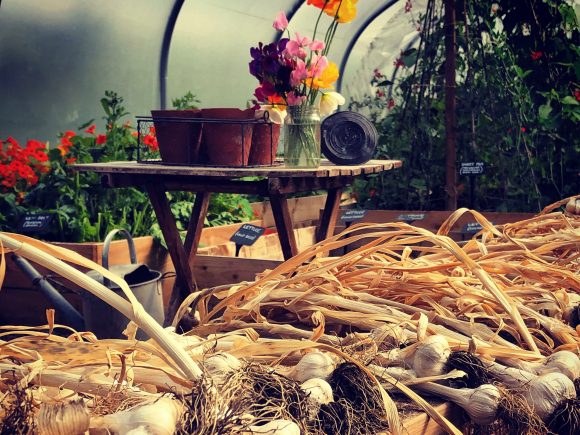 A Beginner's Guide to Organic Smallholding   10 July 2021   This Course is Fully Booked
